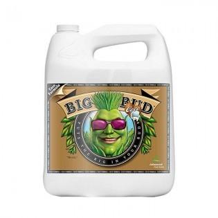 Big Bud Coco Liquid 4 Litros