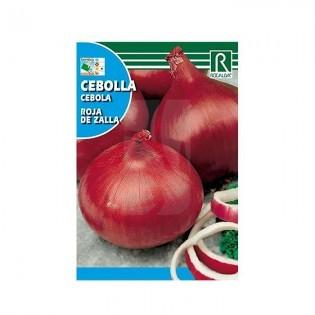 Semillas de Cebolla roja