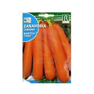 Semillas de Zanahoria Toro