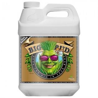 Big Bud COCO Liquid de 10 Litros