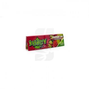 Juicy Jay 1/4 Strawberry-Kiwi librito