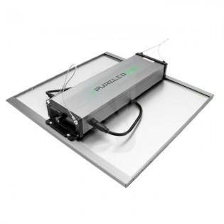 Pure LED Q240 (240W) Equipos LED