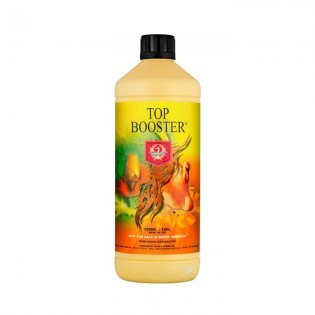 TOP BOOSTER 1 Litro H&G