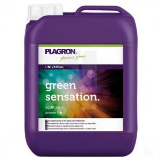 GREEN SENSATION de 10 Litros PLAGRON