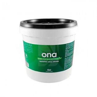 ONA GEL 3,8 KG CUBO (APPLE CRUMBLE)