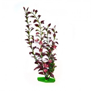 Planta Acuario Grande 30 cm.