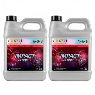 Impact Bloom A+B 1 Litro Grotek