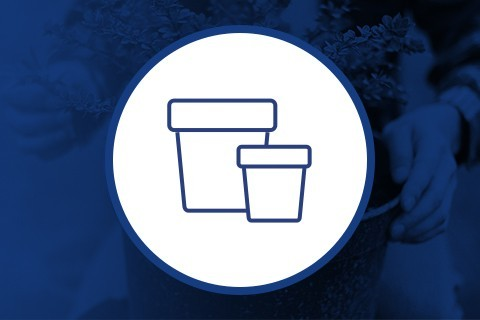 Conservación y curado de tu cultivo ▷ Grow Shop Web
